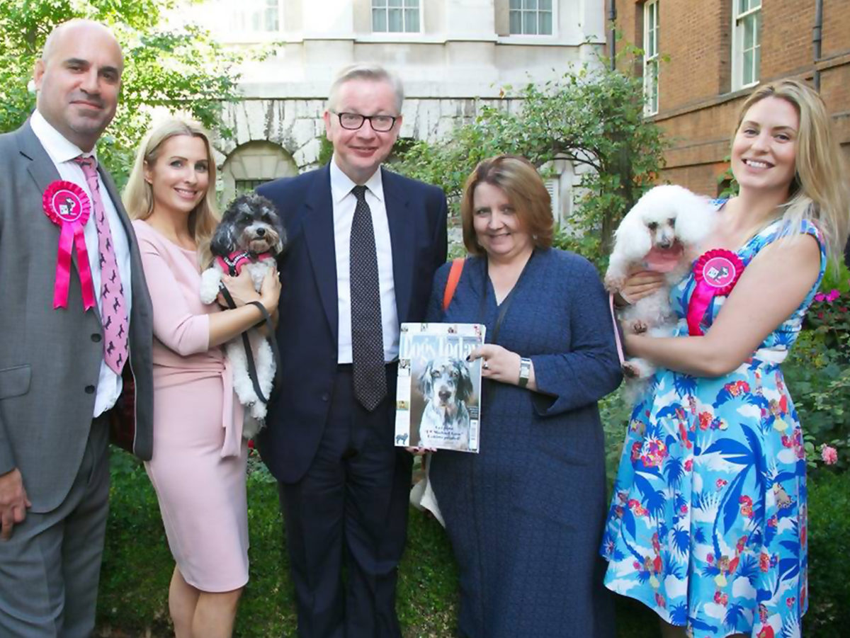 'We're here to look after the underdog': Dogs Today editor reflects on campaign win to get puppies out of pet shops