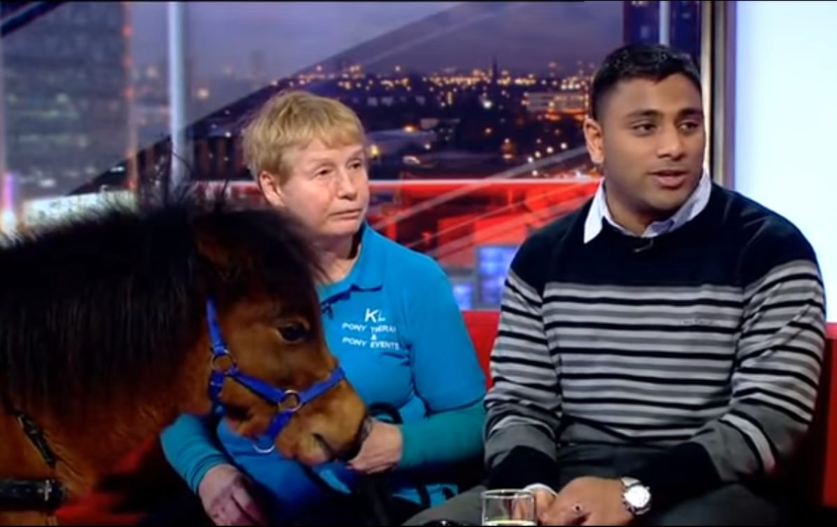 Blind BBC journalist afraid of dogs is first person in UK to receive 'guide horse'