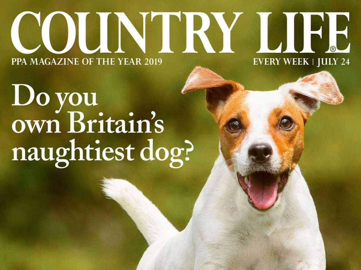 Country Life swaps plastic wrapping for paper on copies delivered to subscribers