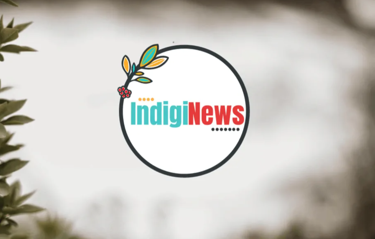 Canadian start-up Indiegraf offers new financial model for local journalism: Reader contribs plus pooled back-end services